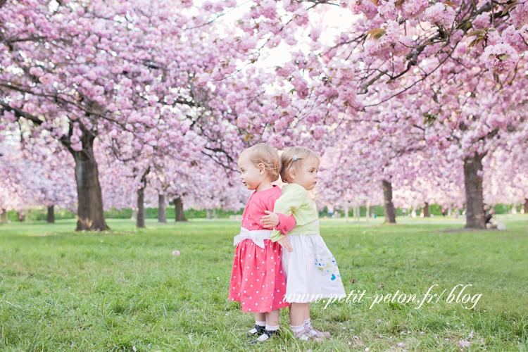 photographe famille 92 sceaux - les cerisiers en fleurs