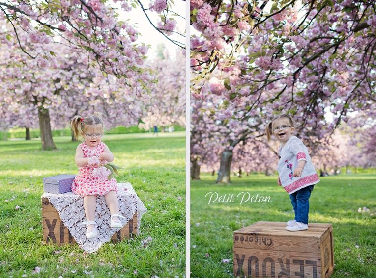 Photographe 92 Sceaux cerisier